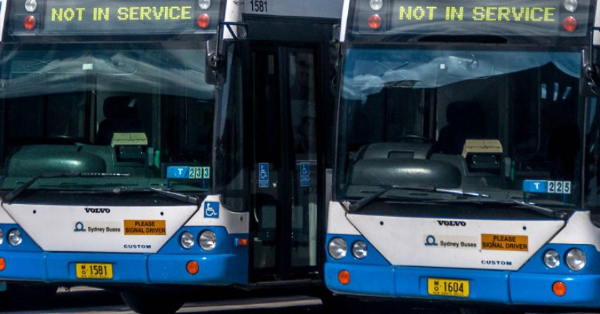 Sydney buses. Photo: Creative Commons / Hpeterswald